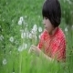 Girl And Dandelions 2 - VideoHive Item for Sale