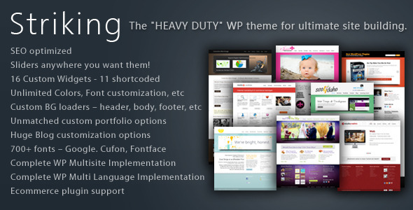 Striking MultiFlex & Ecommerce Responsive WP Theme - Business Corporate