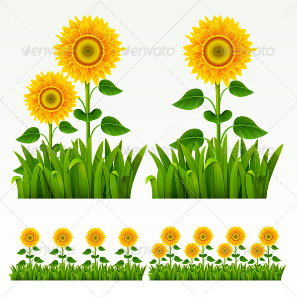 Grass border GraphicRiver - Vectors -  Conceptual  Nature  Flowers & Plants 264274
