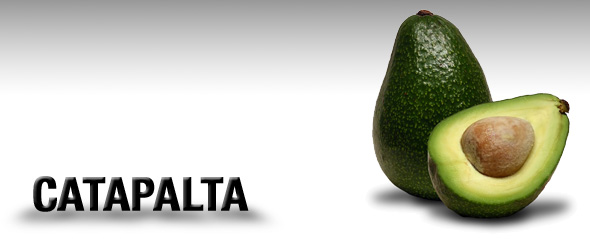 catapalta