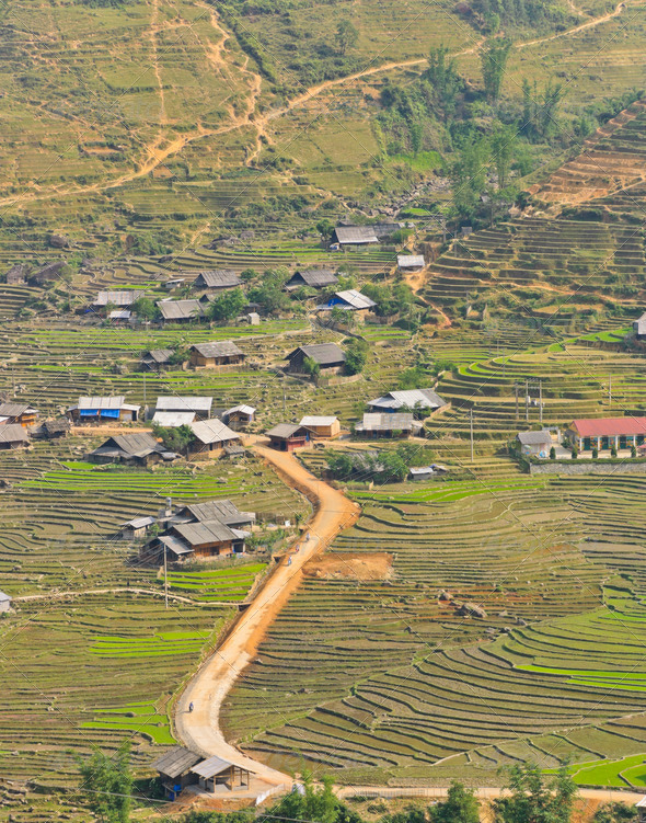 Hmong minority village in rice terraces - Stock Photo - Images
