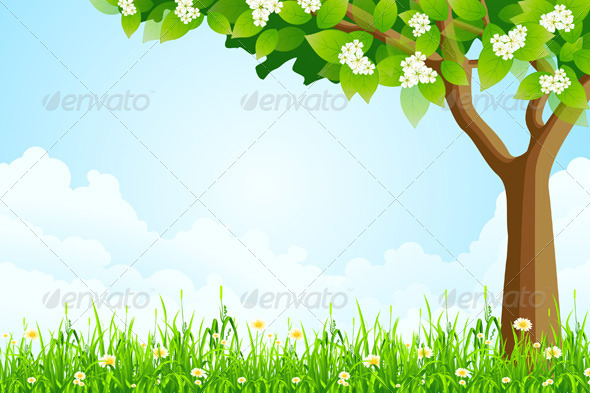 Green Landscape with  Tree - Landscapes Nature