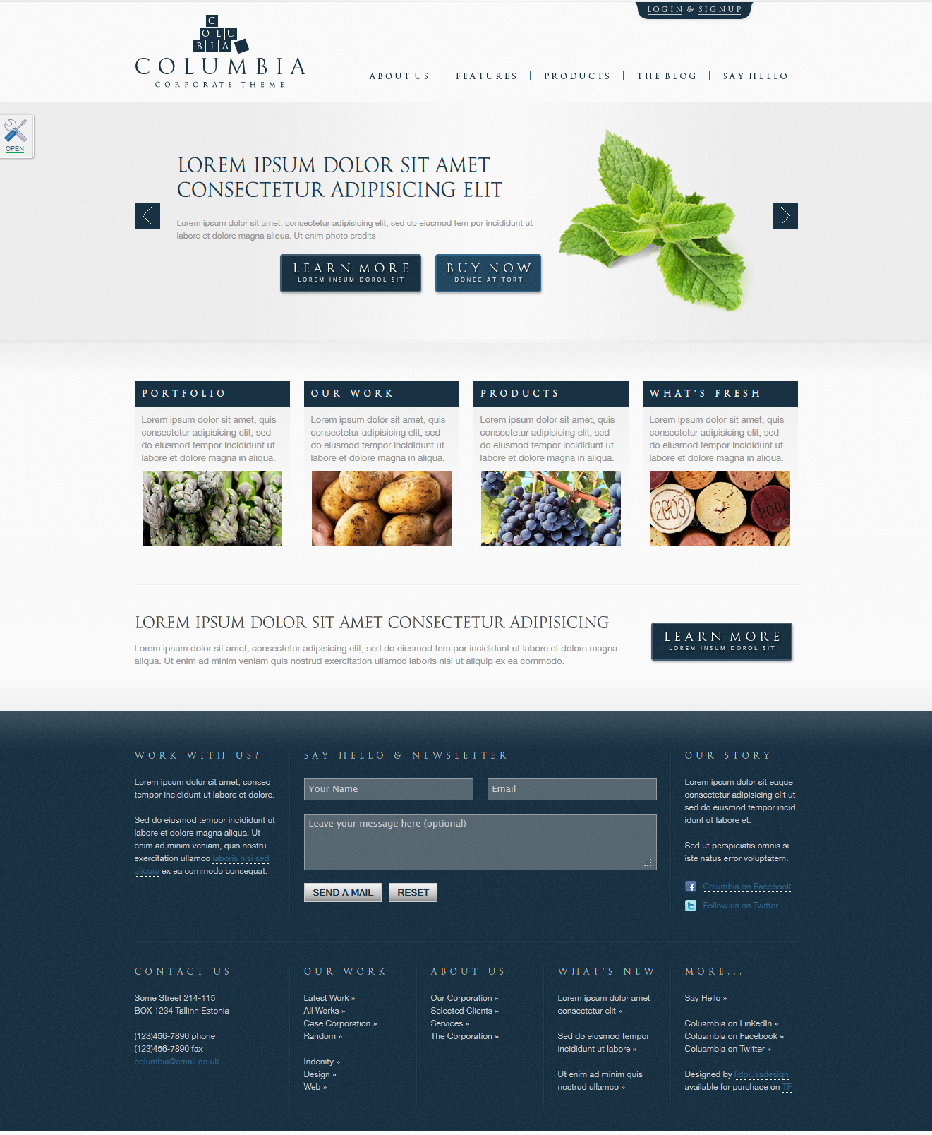"Columbia Corporate Theme with Product Showcase - Homepage skin ""blue"""