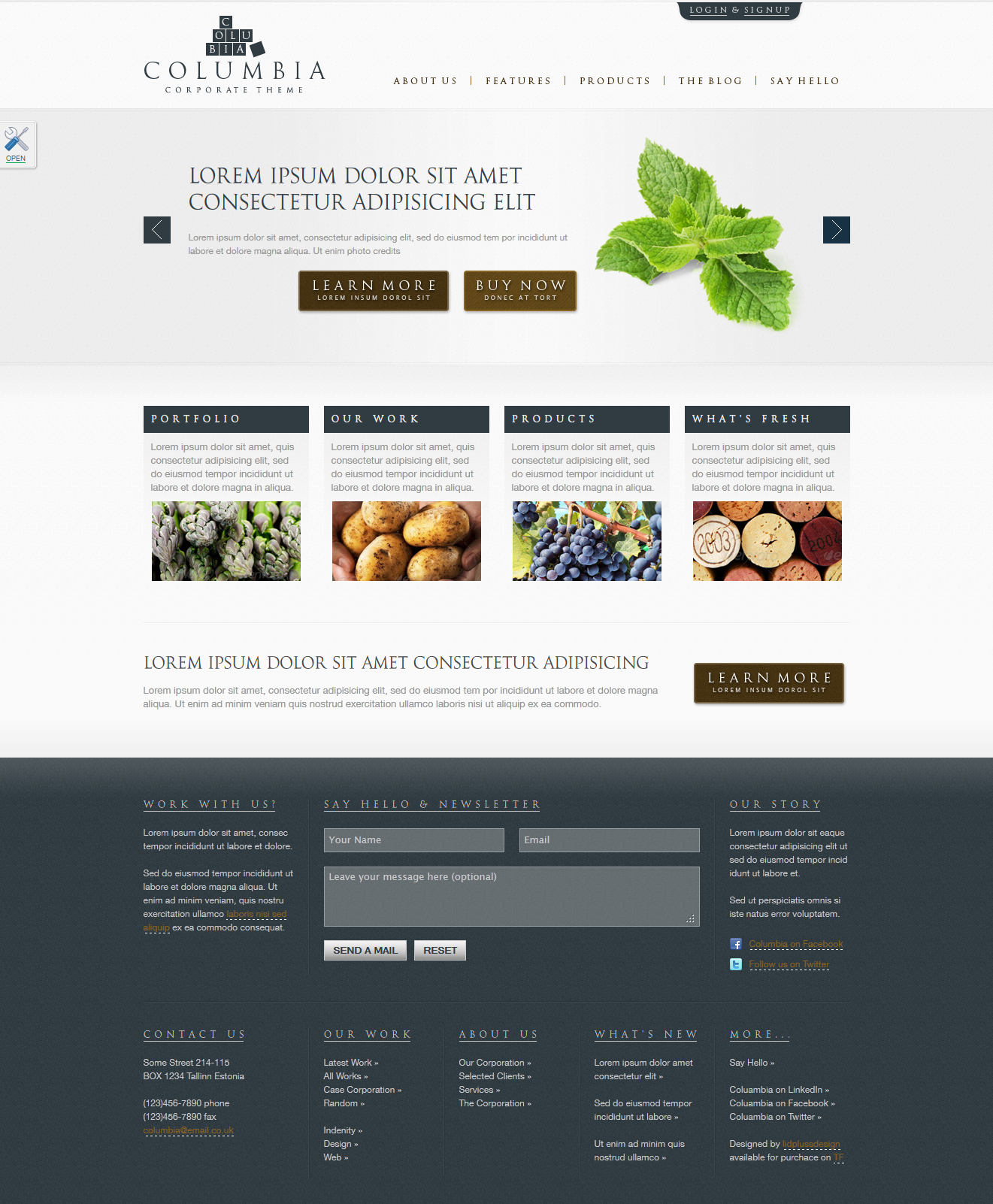 "Columbia Corporate Theme with Product Showcase - Homepage skin ""blueBrown"""