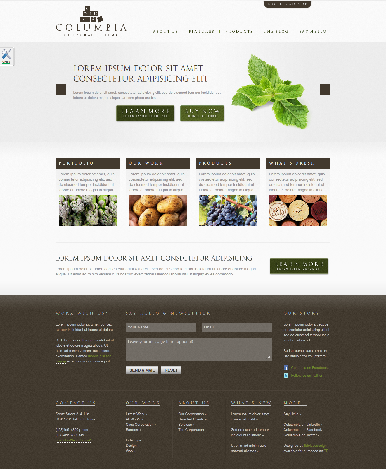 "Columbia Corporate Theme with Product Showcase - Homepage skin ""greenBrown"""