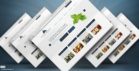 Columbia Corporate Theme with Showcase - WP - Preview image