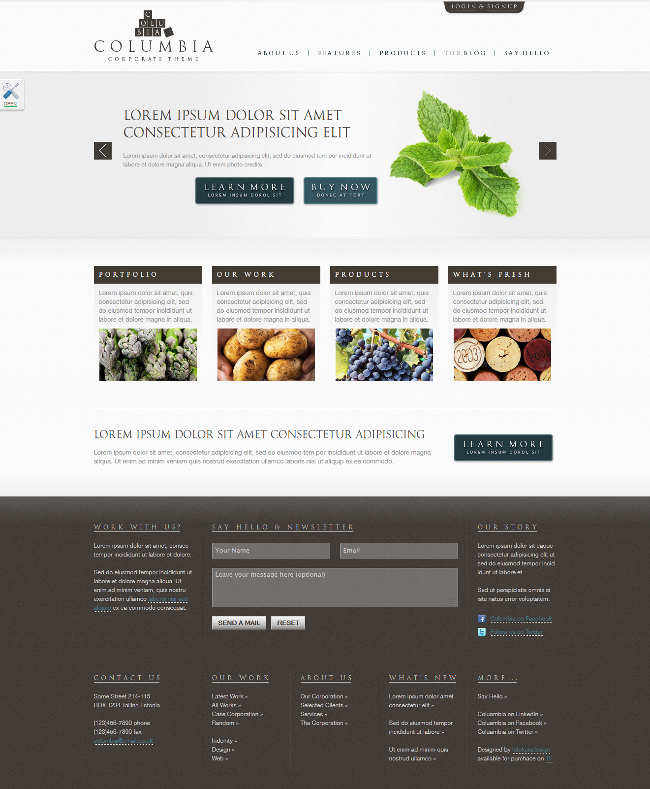 "Columbia Corporate Theme with Showcase - WP - Homepage skin ""blueGray"""