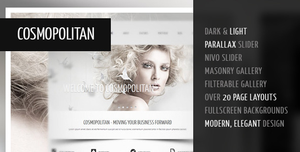 Cosmopolitan - Professional Business HTML Theme