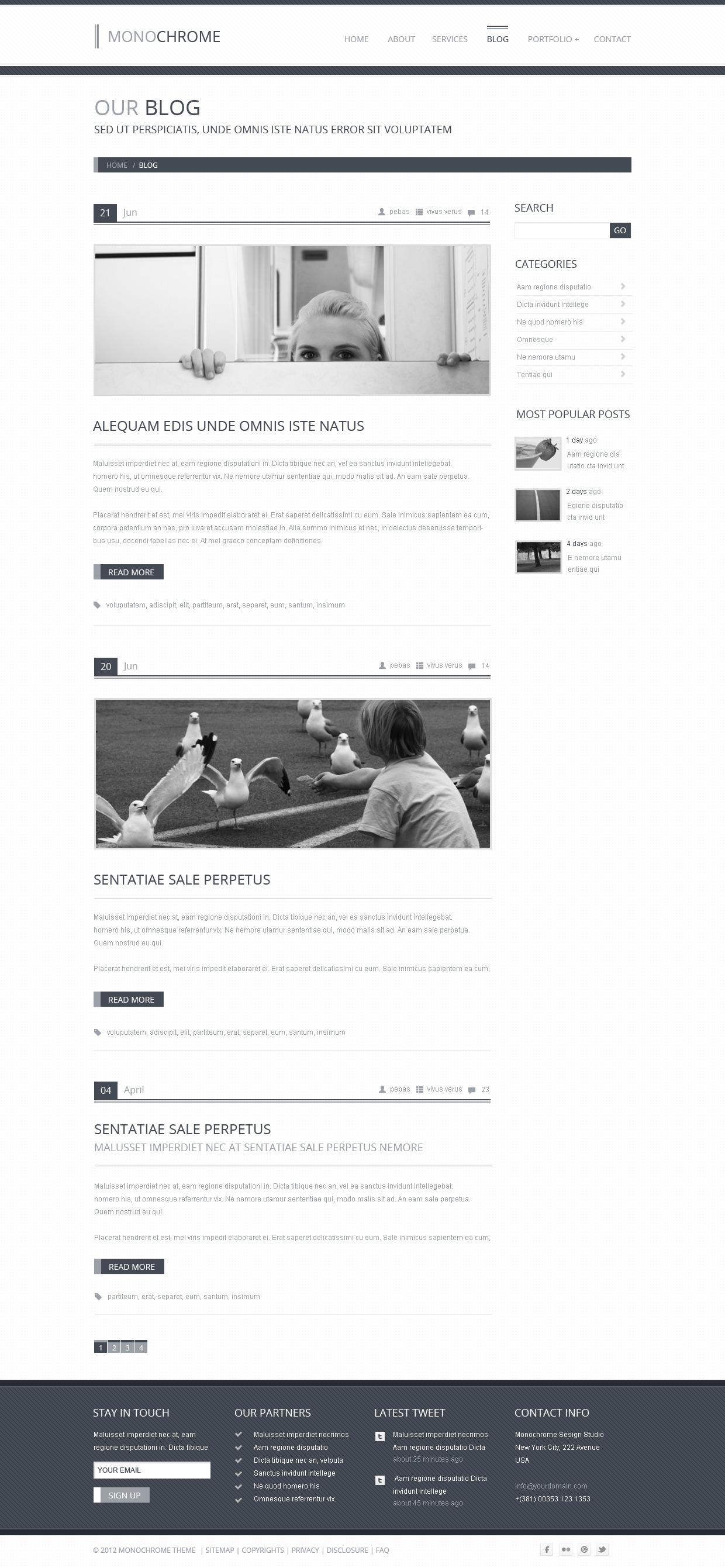 Monochrome - Creative PSD Template