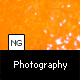 NG Photography Template (xml) - ActiveDen Item for Sale