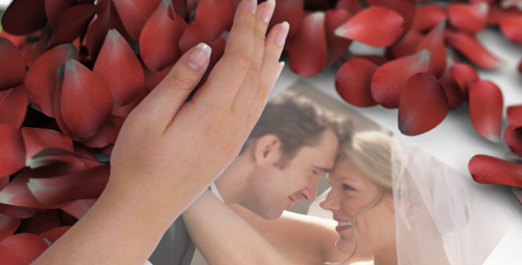 VideoHive American Beauty 2505351