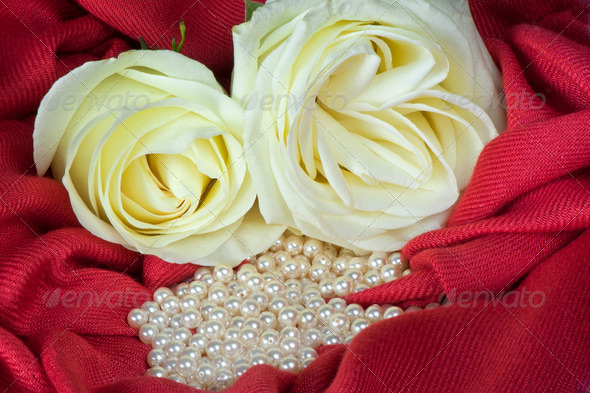 pearls  on a colored background fabric - Stock Photo - Images