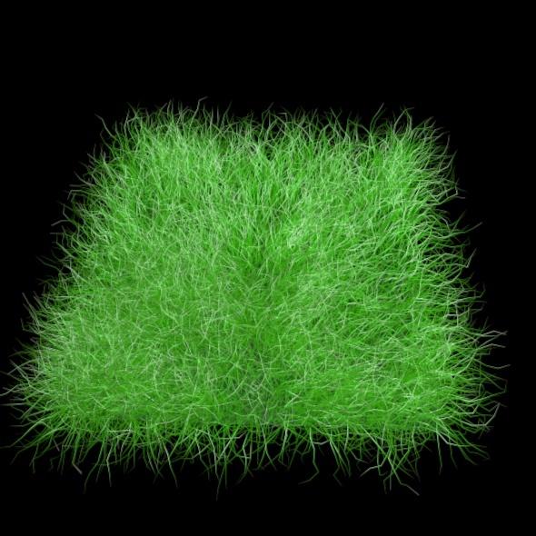 3DOcean Grass 2543349