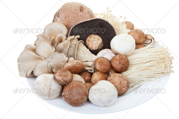 Mixed mushrooms - Stock Photo - Images