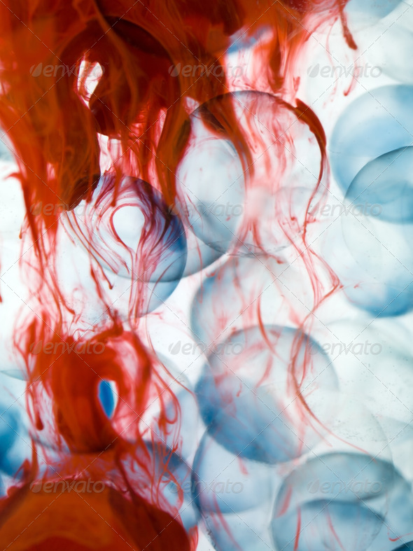 cells with blue border transparent red paint dispersed in water - Stock Photo - Images