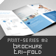 Brochure Tri-Fold Print-Series #2 - GraphicRiver Item for Sale