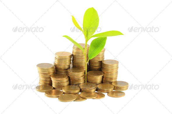 Financial graph with coins - Stock Photo - Images
