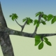 Tree with nice leaf - 3DOcean Item for Sale