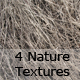 Assortment of 4 Nature Textures  - GraphicRiver Item for Sale