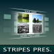 Stripes Displays - VideoHive Item for Sale