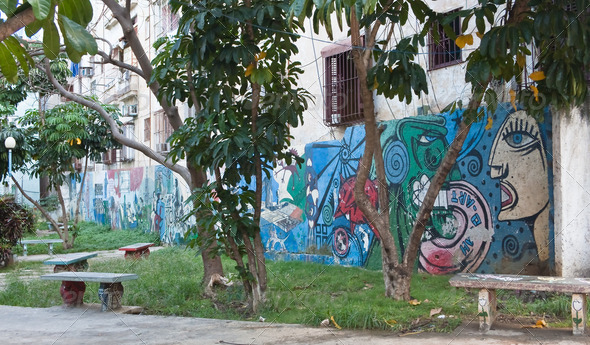 Graffiti. Havana. Cuba - Stock Photo - Images