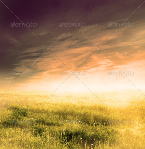 Fairy, magical landscape with sunrise fog - Stock Photo - Images
