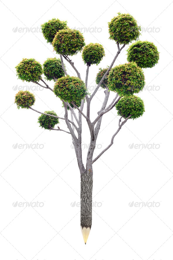 Pencil of wood material with fresh leaves. Green planet concept - Stock Photo - Images