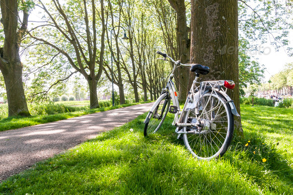 Bicycle in the park - Stock Photo - Images