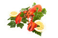 Red lobster with lemon and parsley - PhotoDune Item for Sale