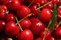 Cherries - PhotoDune Item for Sale