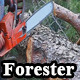Forester Cutting A Tree - VideoHive Item for Sale