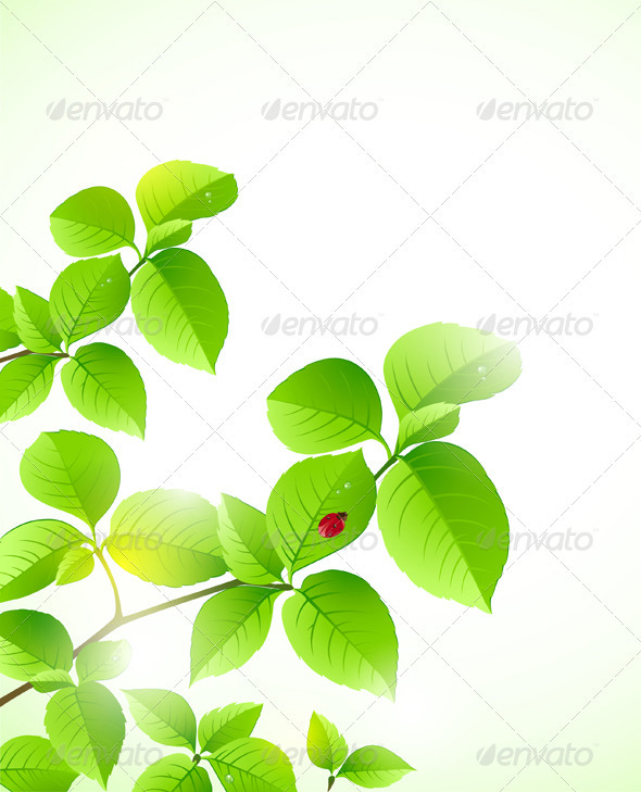 Floral Background with Green Branch - Flowers &amp; Plants Nature