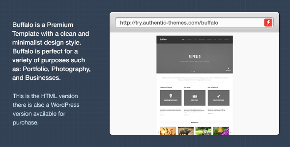 Buffalo Business & Portfolio Template