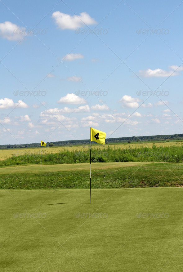 Golf yellow flags - Stock Photo - Images