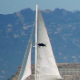 Alcatraz Island Sail Boat San Francisco - VideoHive Item for Sale