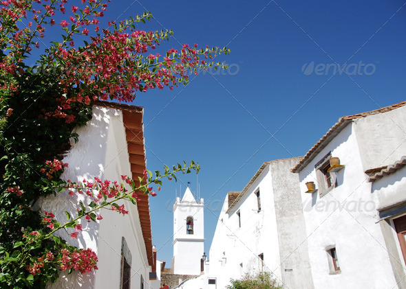 Flowers on portuguese street - Stock Photo - Images