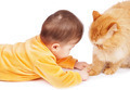 Baby and cat - PhotoDune Item for Sale