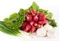 Spring onions, garlic, lettuce and radish - PhotoDune Item for Sale