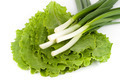 Spring onions on  lettuce - PhotoDune Item for Sale