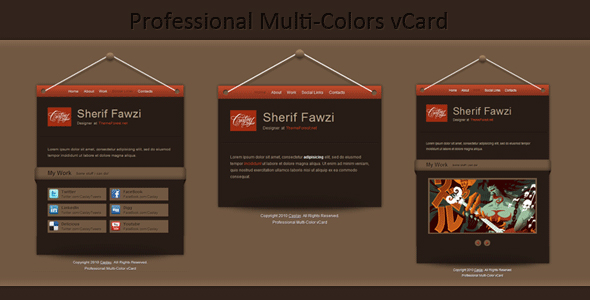 Professional Multi-Color vCard