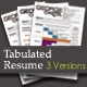 Tabulated Resume (03 Different Versions) - GraphicRiver Item for Sale