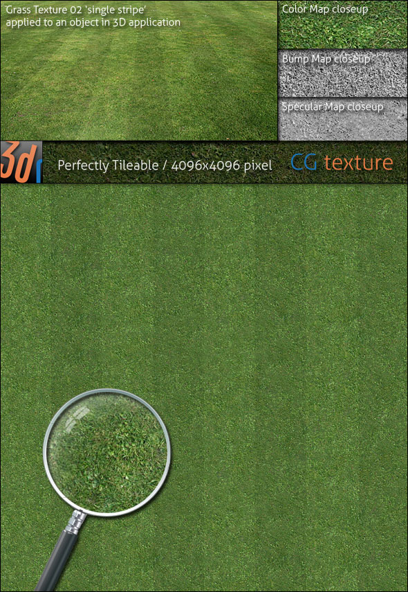 Grass Lawn Hi-Res Texture 02 'Single Stripe' - 3DOcean Item for Sale