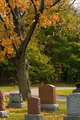 Autumn sunny day in the cemetery - PhotoDune Item for Sale
