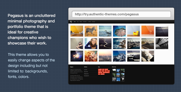 Pegasus Photography & Portfolio WordPress Theme