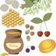 Summer Tasty Gifts of Nature - GraphicRiver Item for Sale