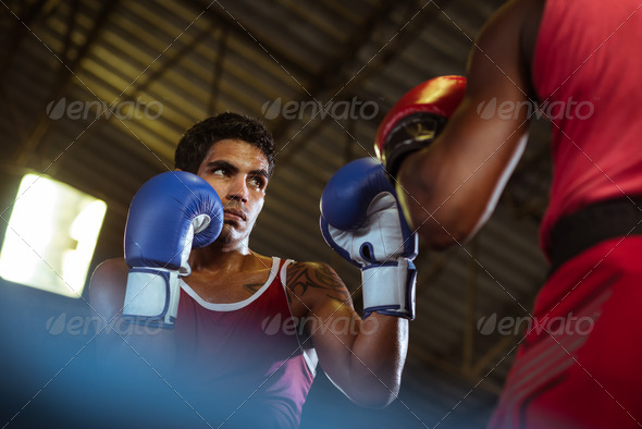 Two male athletes fight in boxing ring - Stock Photo - Images