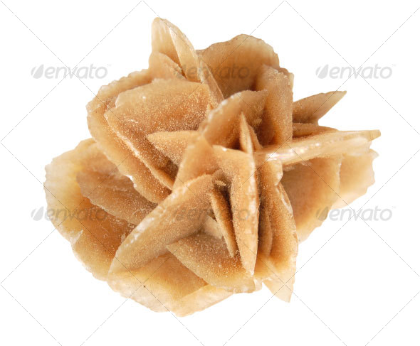 Desert Rose - Nature &amp; Animals Isolated Objects