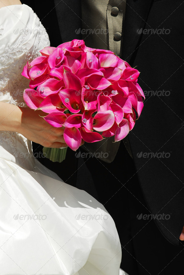 Royalty Free Stock Photography : Wedding Couple Photodune 197558