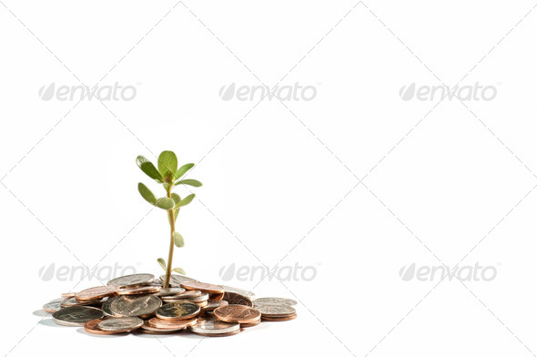 Grow your savings - Stock Photo - Images