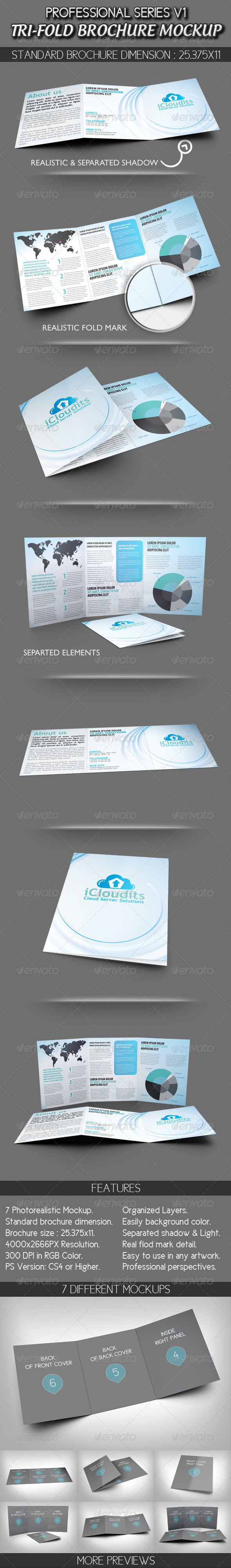 Professional Tri-fold Brochure Mockup V1 - Brochures Print